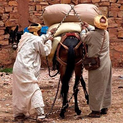 trekking-por-marruecos